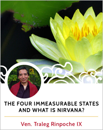 The Four Immeasurable States and What is Nirvana?