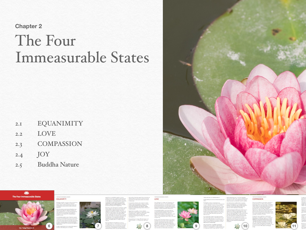 The-Four-Immeserable-States03